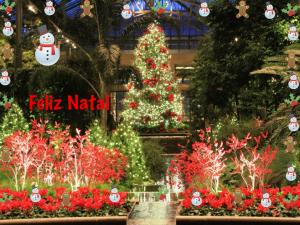 feliz-natal-2010