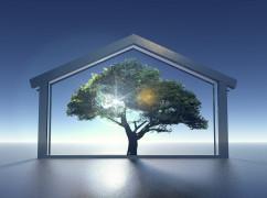 Eco_construction_by_brunoben