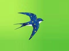 europe-hirondelle